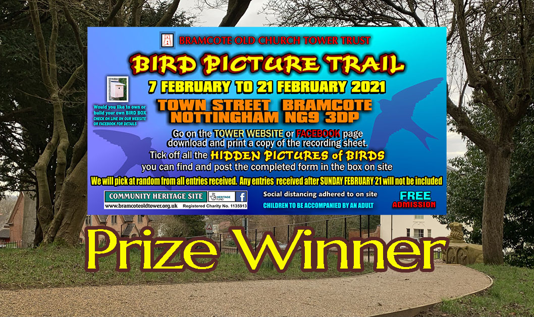 Bird Trail – Prize winner