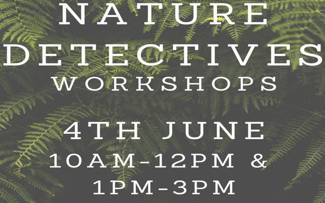 Nature Dectectives Workshop